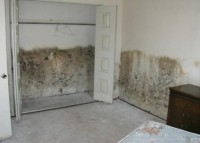 Condensation often misdiagnosed as 'Rising Damp'